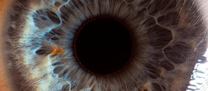 ocular reasoning
